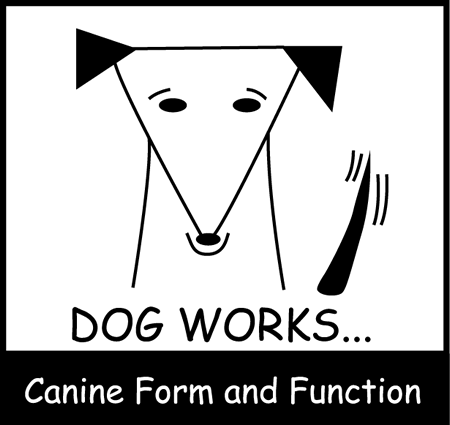 Dog Works Canine Form and Function